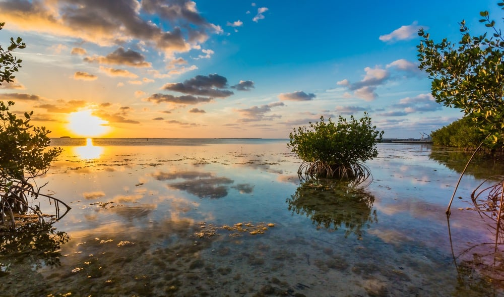 Beautiful-Key-West-FLorida-Photos-23