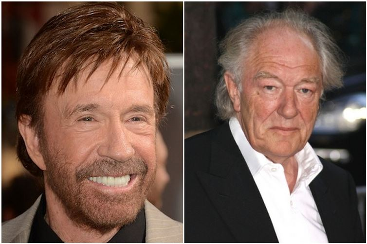 Chuck-Norris-and-Michael-Gambon-1940