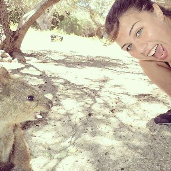 Cuteness Break: Meet The 'Quokka,' World's Happiest Animal ...