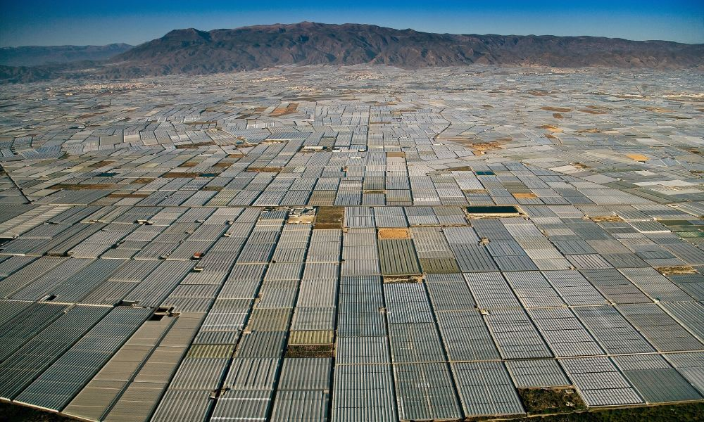 greenhouses-in-almeria-spain