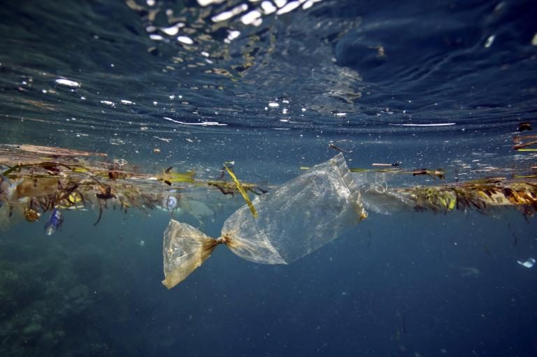 plastic waste in the oceans