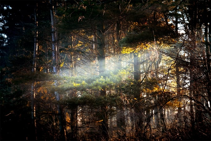 """""""The Recondite"""" - Wonderful Photo Series by Grant Gill -photography, lifestyle, fine art"""