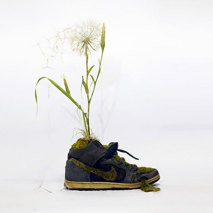 Just Grow It: French Artist Transforms Nike Sneakers Into Blooming Plant Gardens -sneakers, nike, nature
