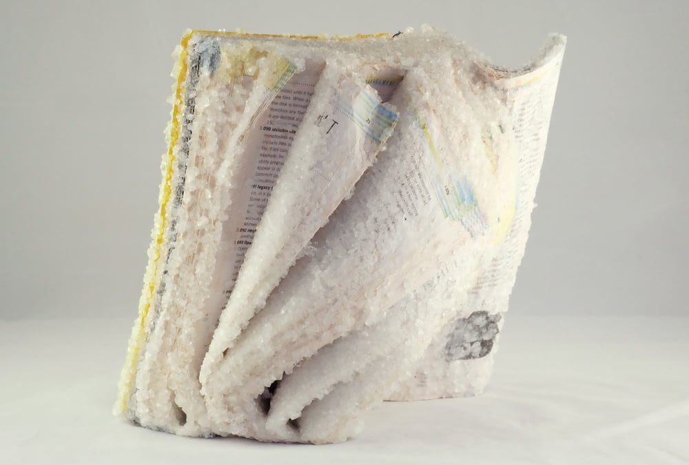 Artist Turns Old Books, Magazines, and Computer Manuals into Crystallized Sculptures -sculptures, salt, books