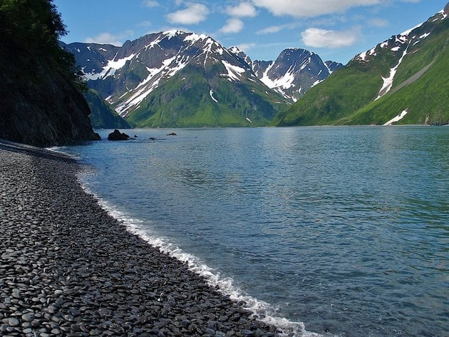 These 20 Magical Photos Of Alaska Will Help You Escape The Heat -wildlife pictures, mountains, forest