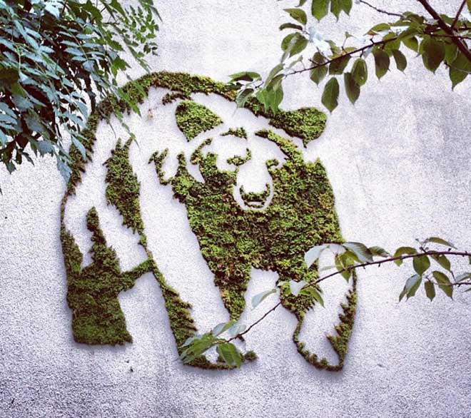 Moss-Graffiti-–-How-to-Do-It3