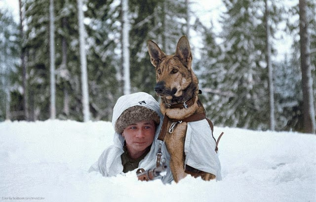 A Finnish soldier practices maneuvers in the winter snow at a military dog training school during the Finnish-Soviet Continuation War. Hämeenlinna, Finland. February 1941. (Source - SA-kuva. Colorized by Jared Enos)