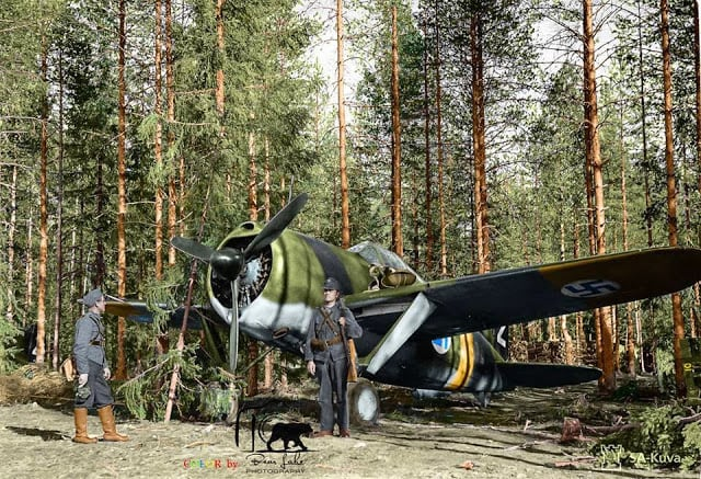 A Finnish Brewster Buffalo 239 fighter (BW-352) of (Squadron) Lentolaivue/24 at Selänpää airfield. 24th June 1941. (Source - SA-Kuva. Colorized by Tommi Rossi from Finland)