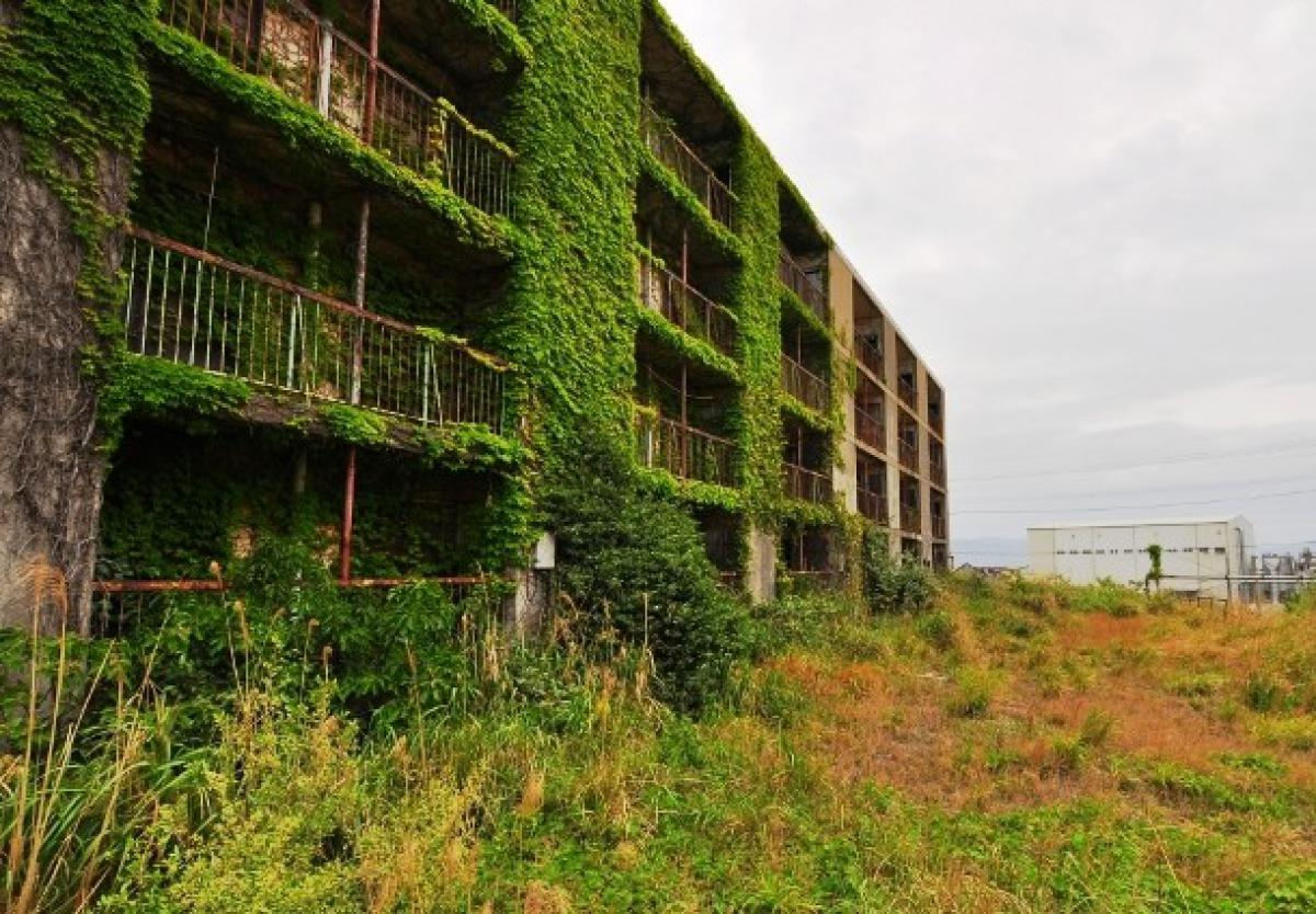 abandonedkansai-com-an-overgrown-apartment-buildin