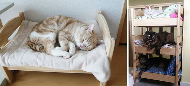 Ikea doll beds turned to cat beds