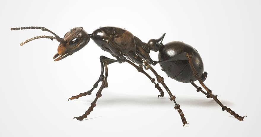 insect-sculptures-edouard-martinet-14