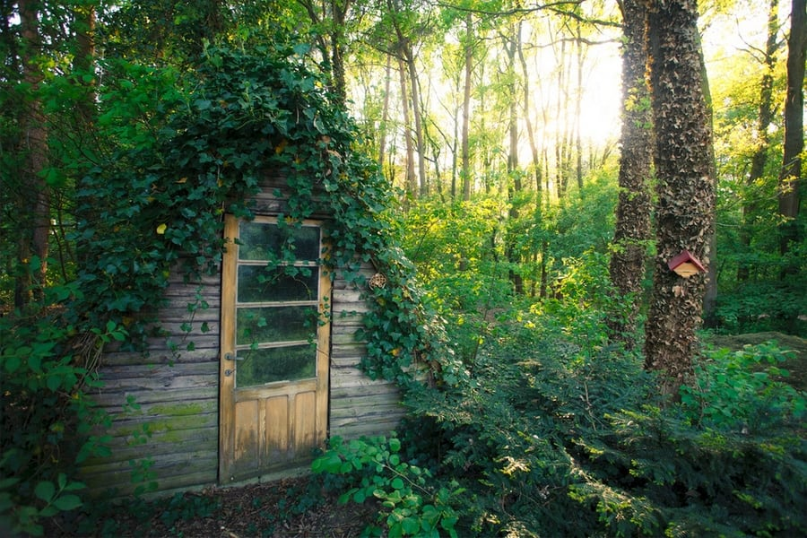 the-most-beautiful-abandoned-cabins-waiting-for-owners-to-come-12