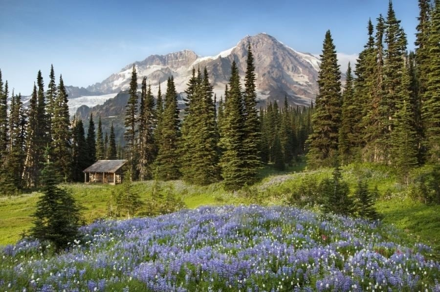 the-most-beautiful-abandoned-cabins-waiting-for-owners-to-come-15