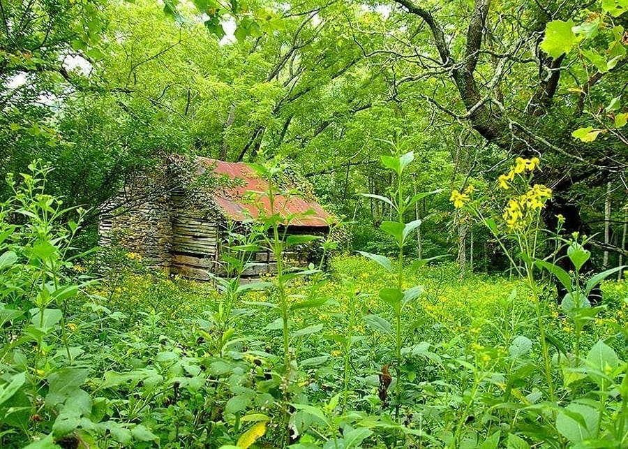 the-most-beautiful-abandoned-cabins-waiting-for-owners-to-come-20
