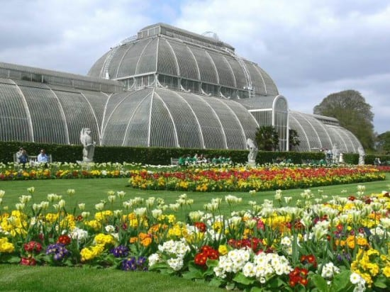 royal-botanical-gardens-kew-london-550x412