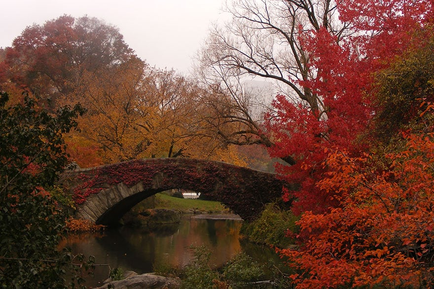 Gapstow Bridge, New York (1)