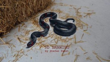 This 3D Snake Painting Looks  So Incredible, You'll Think It's Alive -Video, realistic, optical illusion, illusion, gif