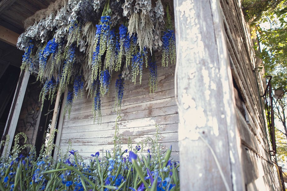 abandoned-house-transformed-flower-house-lisa-waud-heather-saunders-15