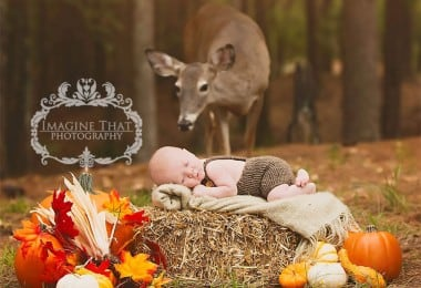deer-newborn-photoshoot-freeyork0