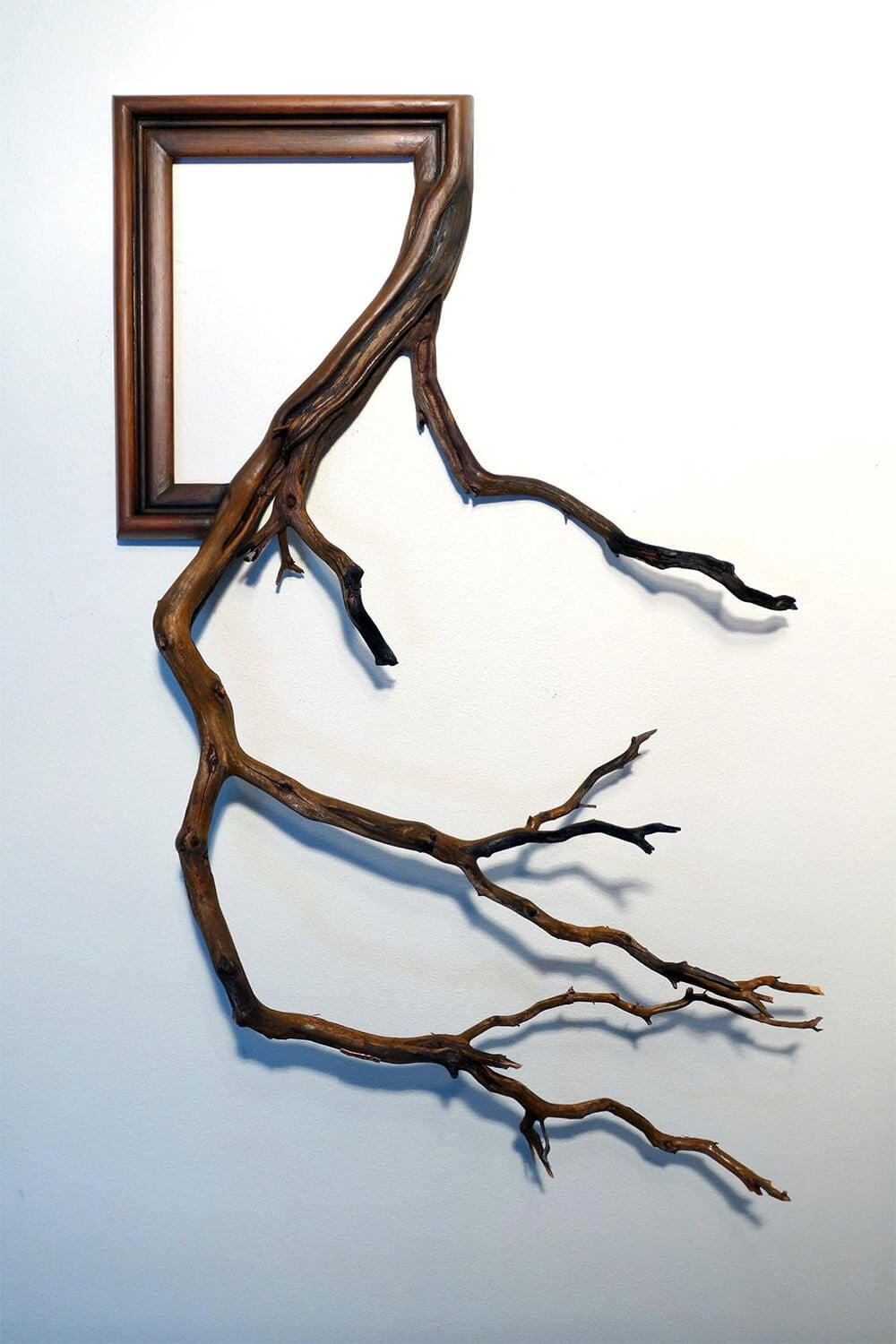 tree-branch-frames-darryl-cox-freeyork-5