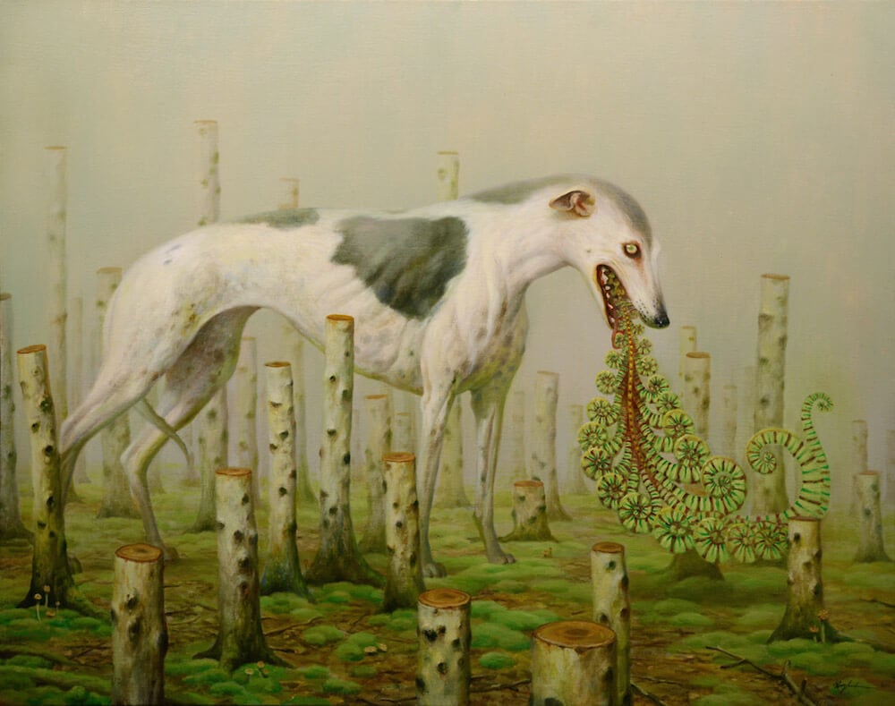 martin-wittfooth-fy6