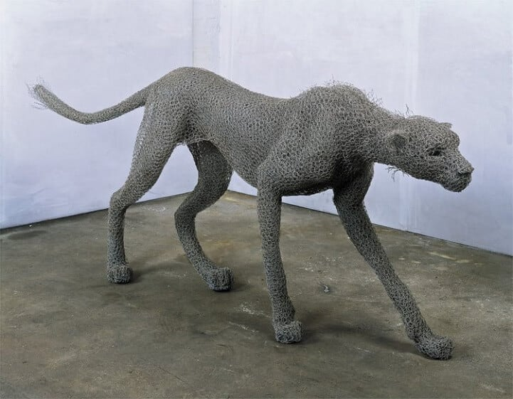 kendra haste fy 11 - Artist Creates Life-Size Animal Sculptures Made Completely Out of Wire