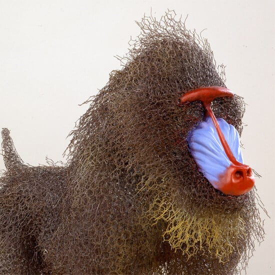 kendra haste fy 2 - Artist Creates Life-Size Animal Sculptures Made Completely Out of Wire