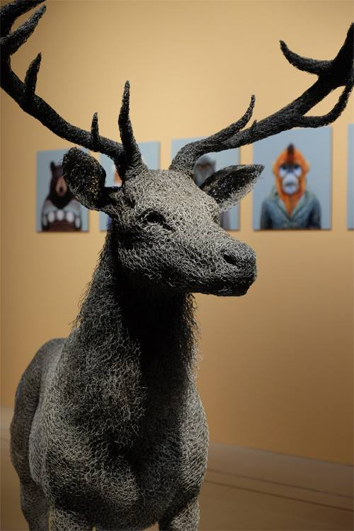 kendra haste fy 8 - Artist Creates Life-Size Animal Sculptures Made Completely Out of Wire