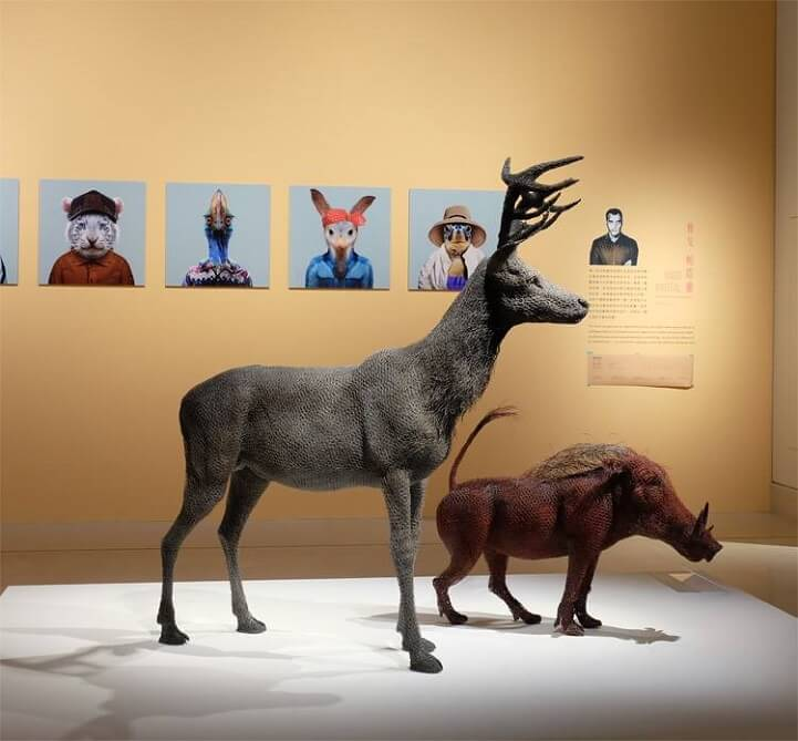 kendra haste fy 9 - Artist Creates Life-Size Animal Sculptures Made Completely Out of Wire