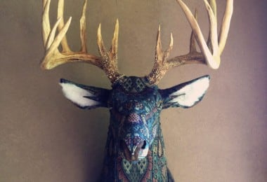 taxidermy-kelly-rene-jelinek-fy-3