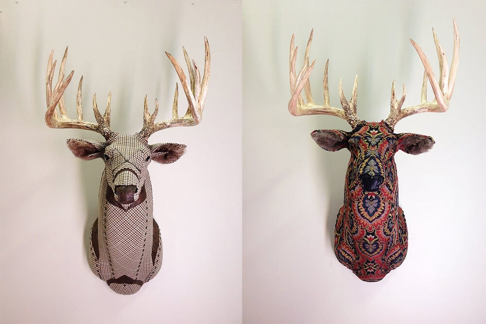 taxidermy-kelly-rene-jelinek-fy-6