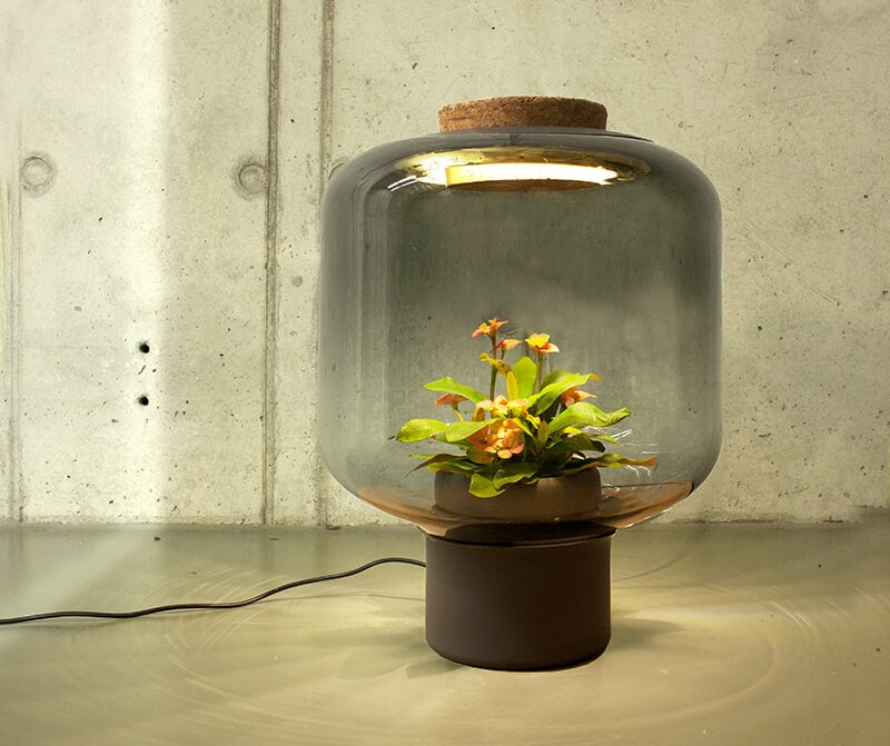 mygdal plantlight fy 2 - Mygdal Plant Light Brings Life Into Windowless Spaces