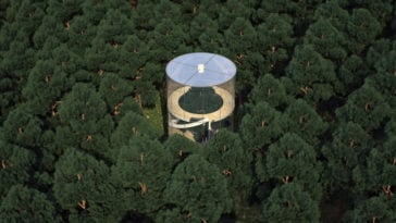 Tubular Glass House Built Around Tree -tree, house, forest