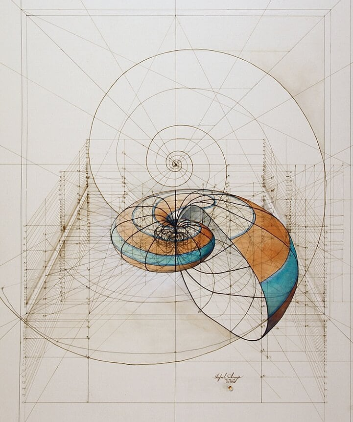 Coloring Book Celebrates Geometrical Harmony of Nature with Hand-Drawn Golden Ratio Illustrations -color