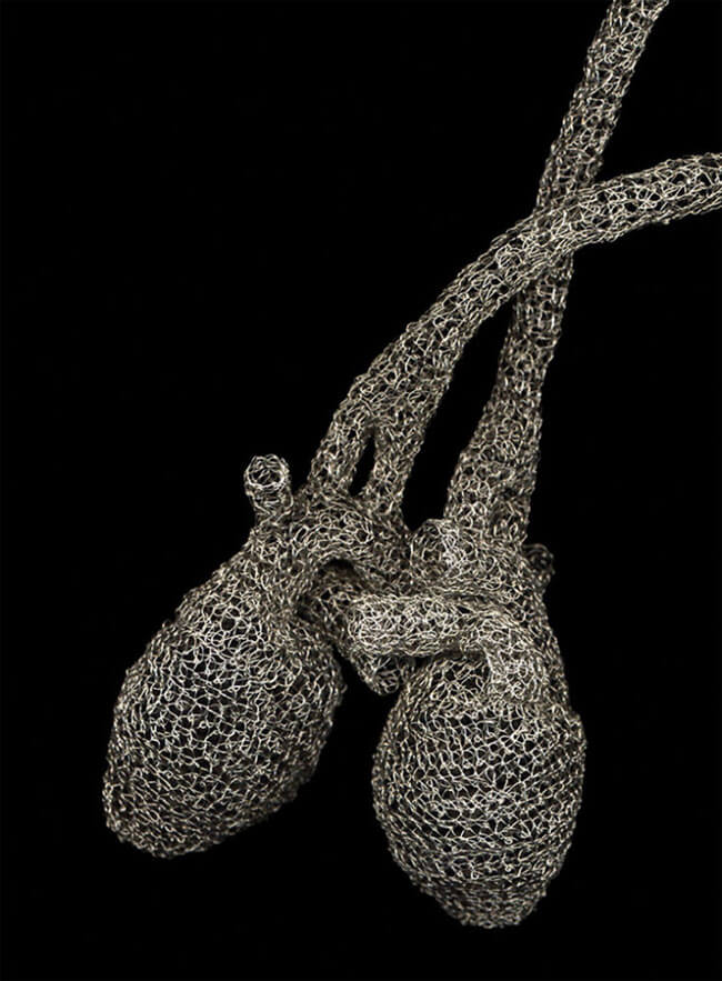 Artist Crochets Wire To Create Anatomically Accurate Heart -sculpture, anatomy