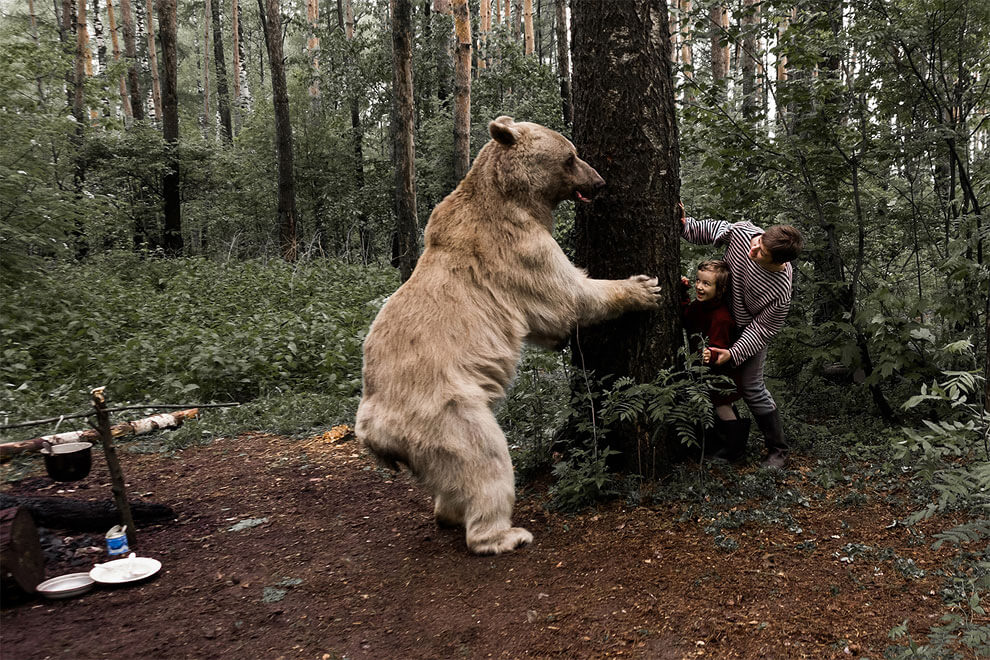best professional drone with Russian Family Poses Lovely Photos Real Bear on Gopro likewise Freefly Alta Pro Filming Drone Arriving In August further 2ue7vx moreover Best Underwater Drones additionally Russian Family Poses Lovely Photos Real Bear.