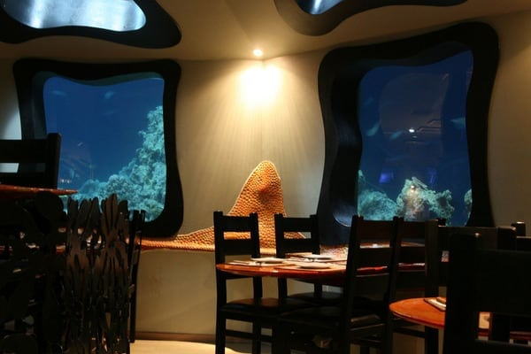 2nd index - Amazing Photos Of An Underwater Restaurant in Red Sea