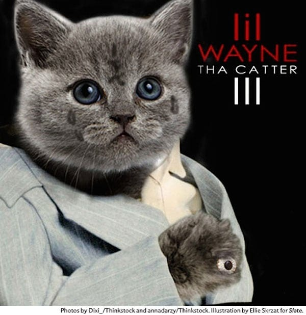 Classic Hip-Hop Album Covers All-Cat Remixed -music, fun, cats
