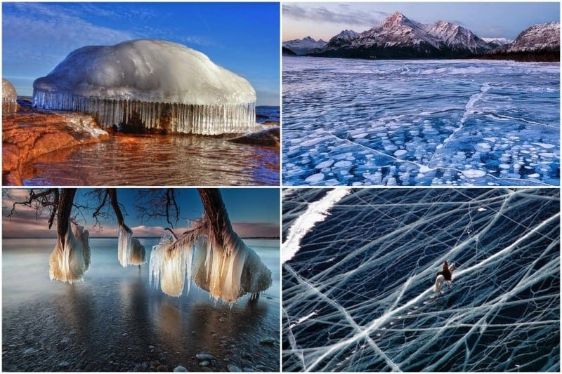 Coldest Morning - The 30 Most Amazing Photos Of Frozen Things In Honor Of The Coldest Morning Of The 21st Century