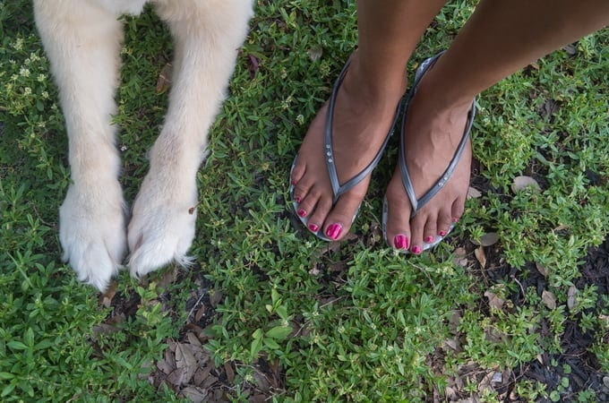 "FEETPAWS03 - ""Feet & Paws"" by Alex Beker"