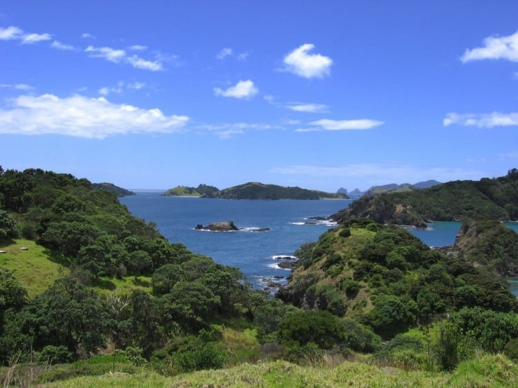 5 Amazing Towns in the New Zealand that You Just Cannot Afford to Miss -new zealand