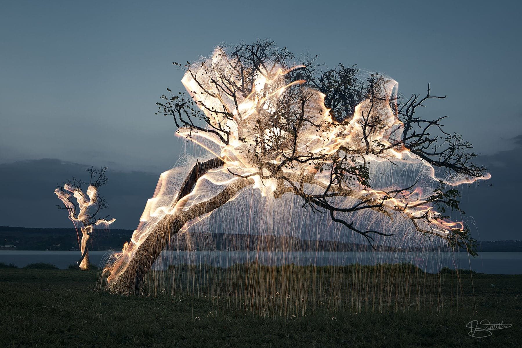 Vitor Schietti's Dynamic Light Paintings Highlight Nature's Inherent Beauty -trees, photography, nature, Light Painting, light, cities, big