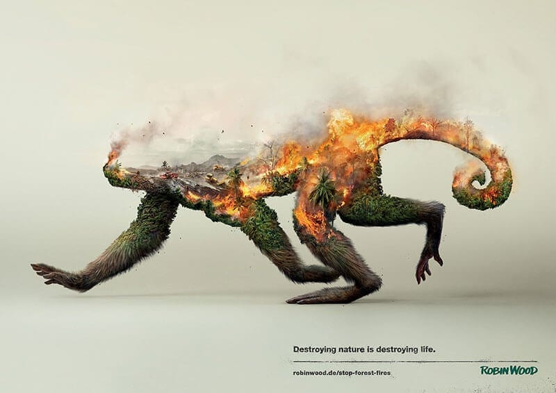 Destroying Nature is Destroying Life by Photoby&co -animals, advertisement