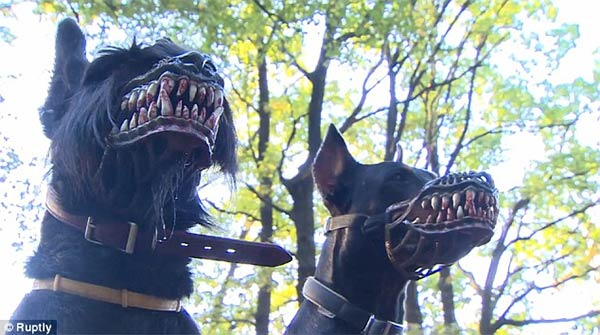 This Terrifying Dog Muzzle Will Transform Your Pooch Into A Frightening Werewolf -dog