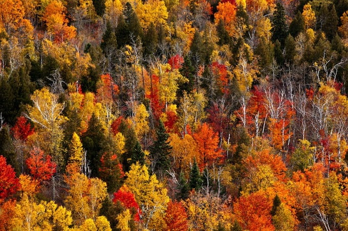 Autumn landscapes of Bryan Hansel -photography, photographer, mountains, landscapes, autumn