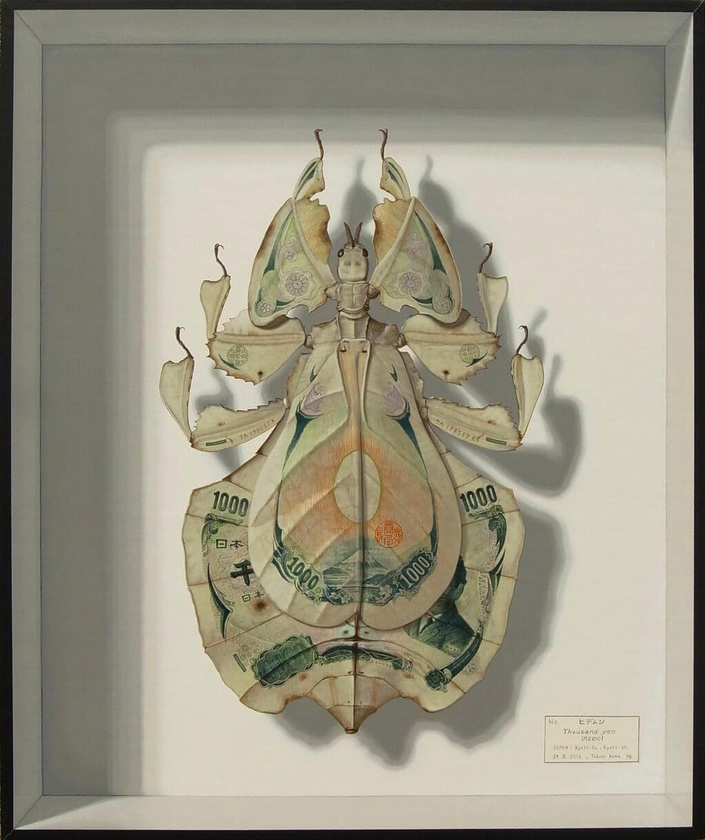 Fabulous Currency Leaf Insects by Takumi Kama -painting, insects