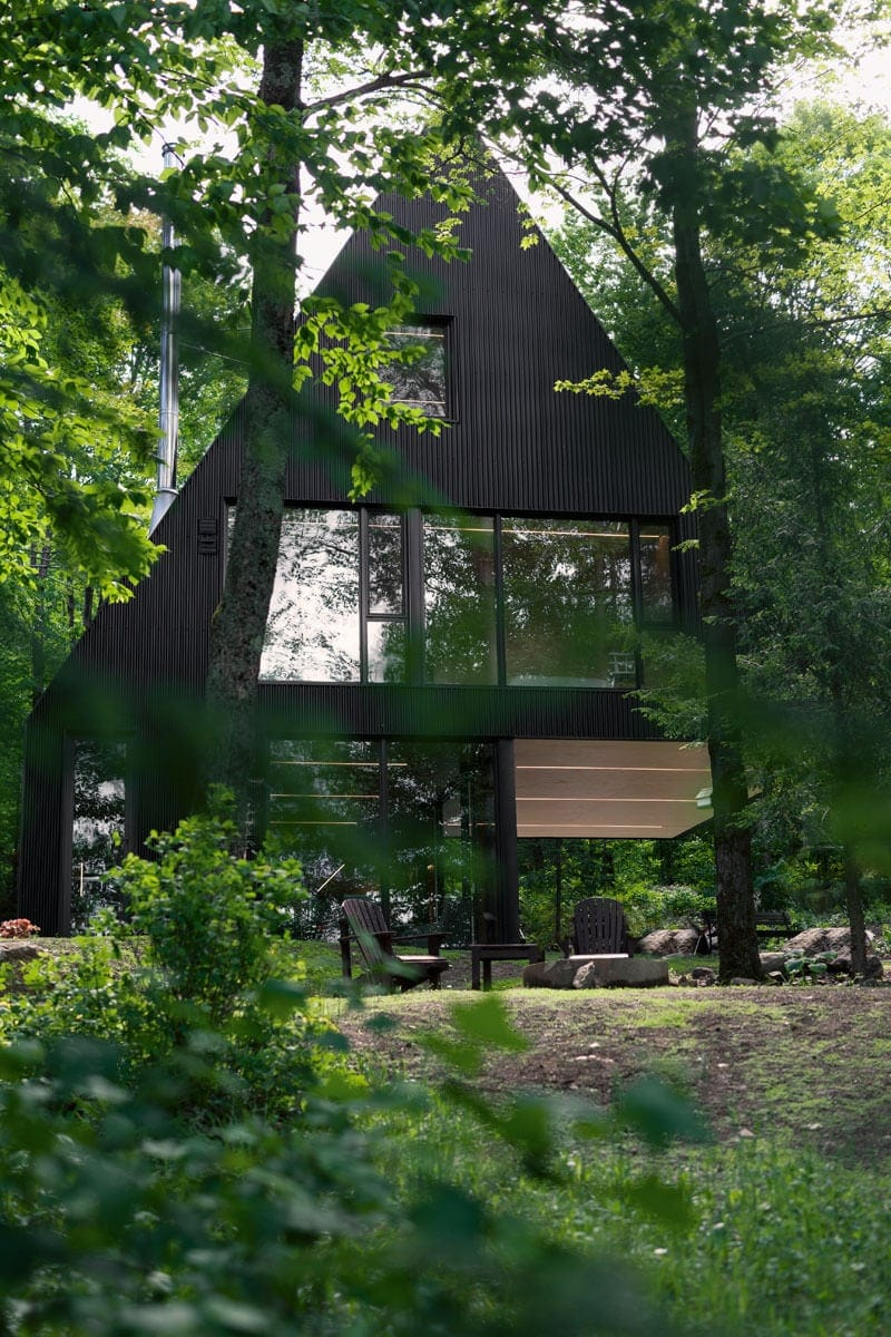 Modern cabin in hemlock forest freeyork