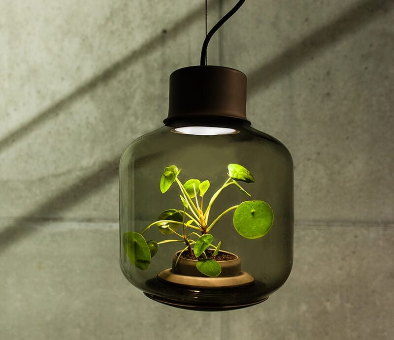mygdal plantlight fy 1 - Mygdal Plant Light Brings Life Into Windowless Spaces