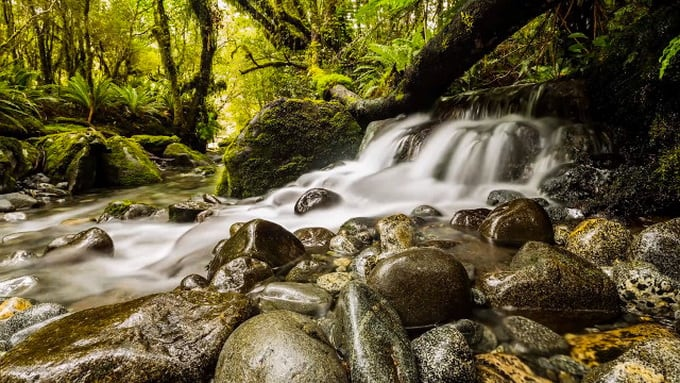 New Zealand by Shawn Reeder (Video) -Video, new zealand