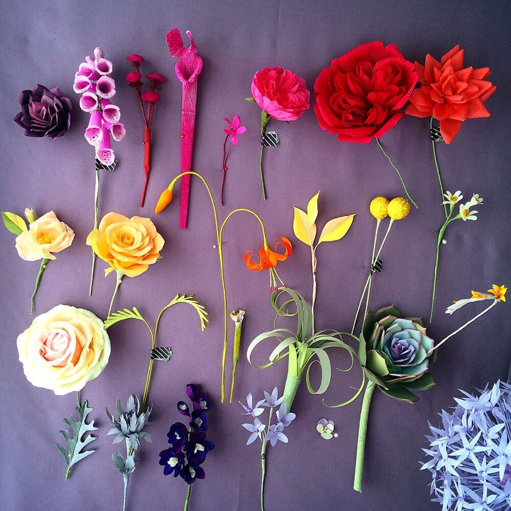 Incredible Paper Flower Crafts by Kate Alarcón -sculpture, plants, paper, flowers